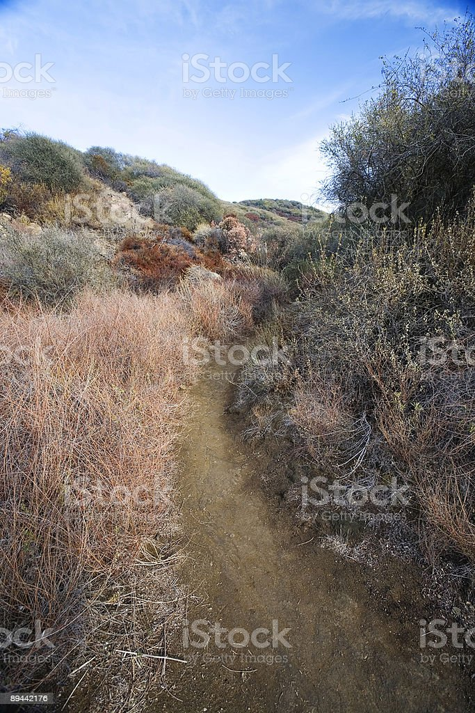 Trail in Topanga State Park royalty-free stock photo