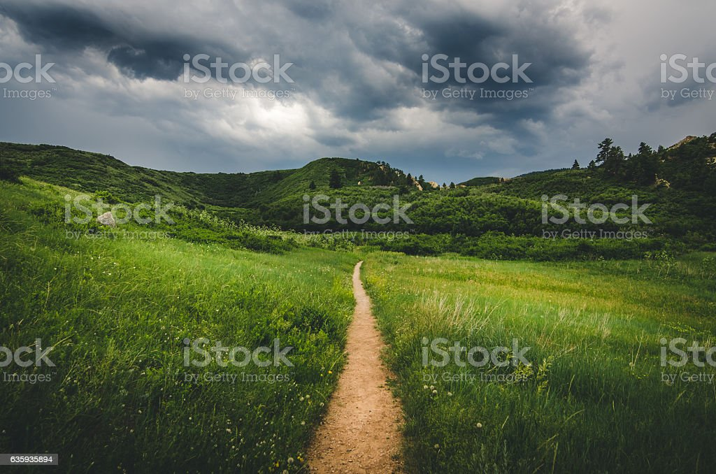 Trail leading into field with hills before a storm. - foto de stock