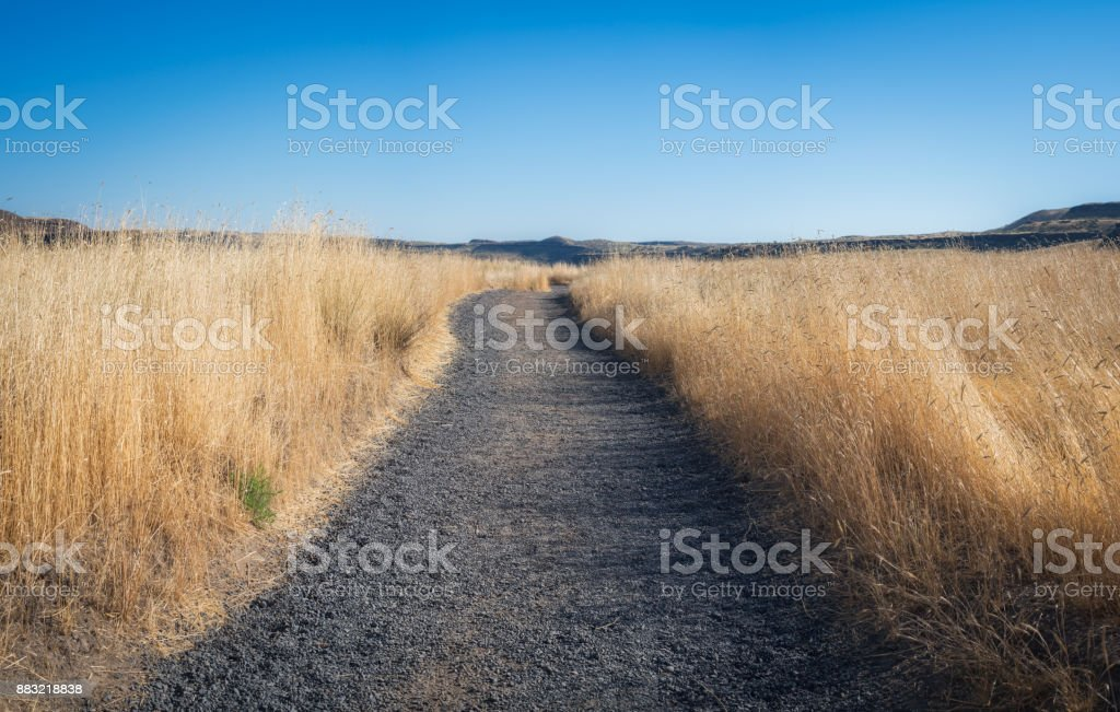 A trail leading through dry tall grass in Palouse Falls State Prk stock photo
