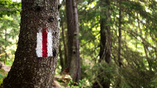 A Trail Marker in the Tour Du Mont Blanc French Alps stock photo