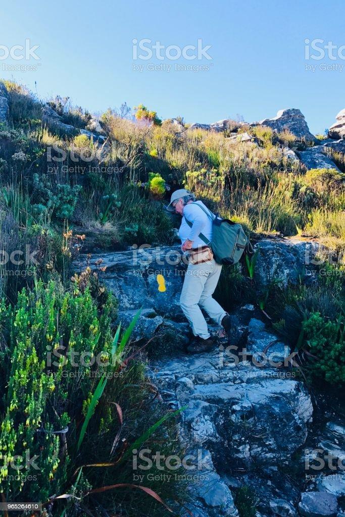 Trail Marker zbiór zdjęć royalty-free