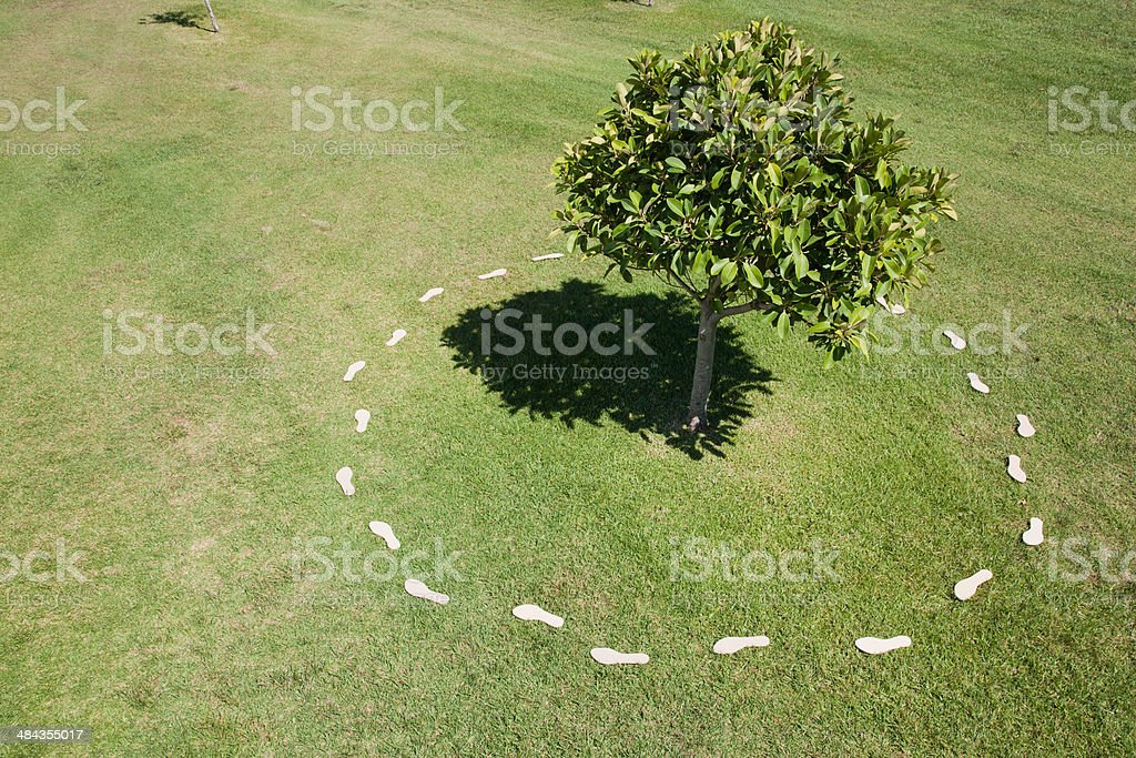 Trail of footprints around tree stock photo