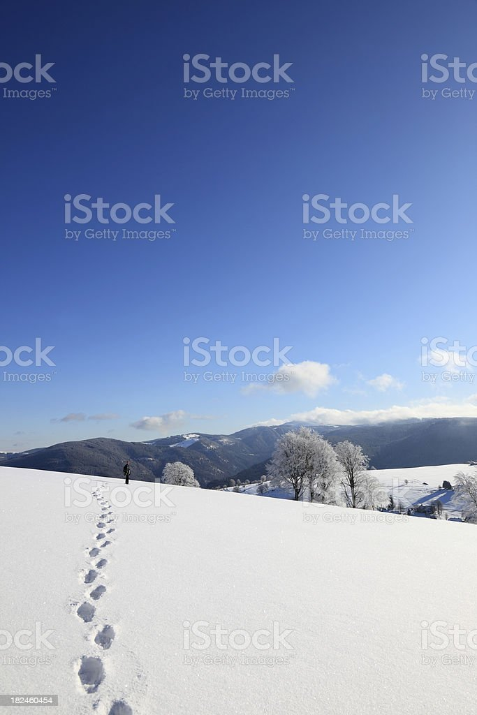 trail of footprints in the snow royalty-free stock photo