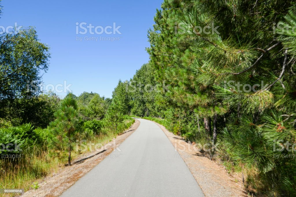 Trail of the Coeur d'Alenes stock photo