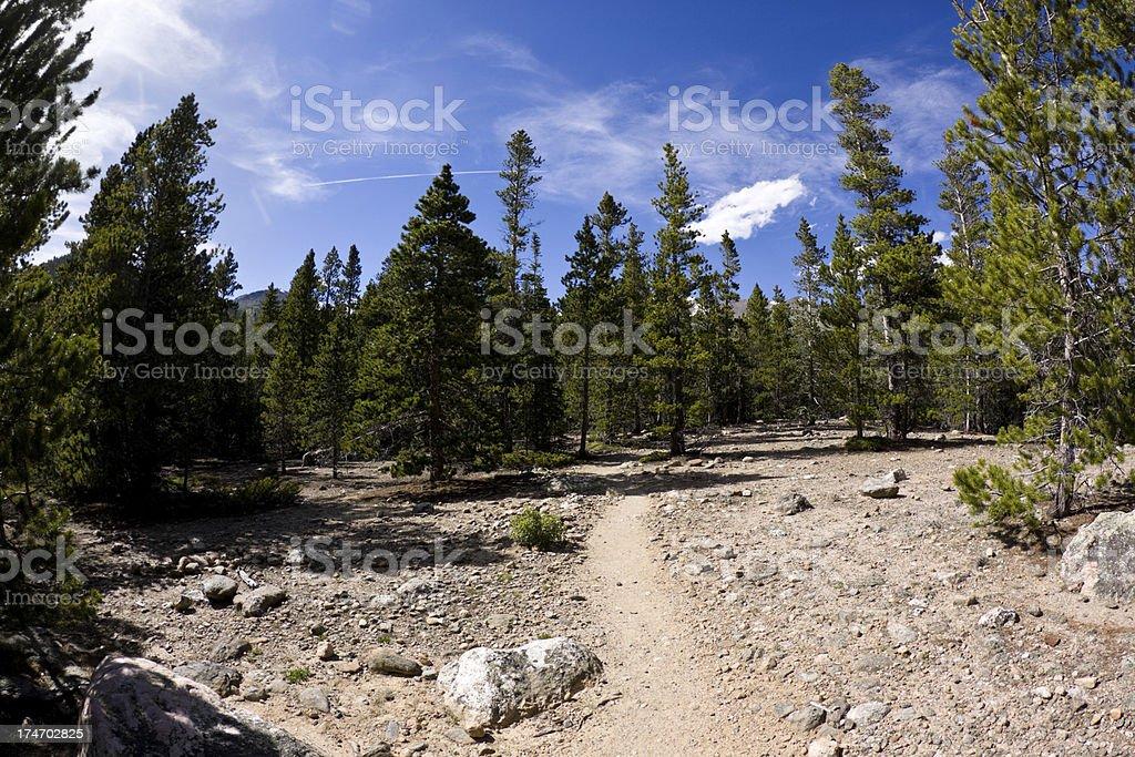 trail royalty-free stock photo