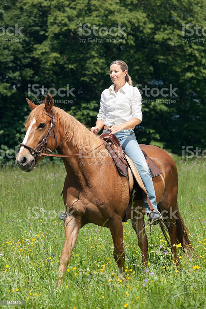 trail ride in spring stock photo