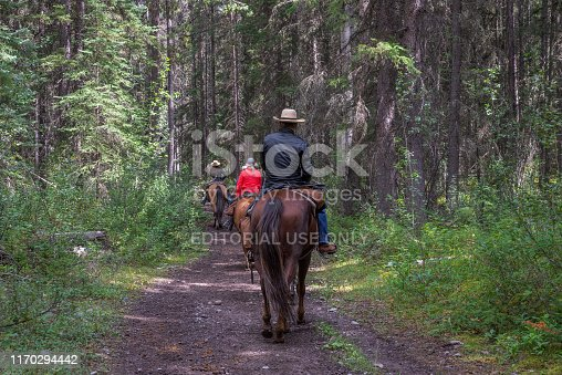 Banff National Park, Alberta, Canada - August 25, 2019:  a small group of trail riders on horseback travel on a dirt road through a forest