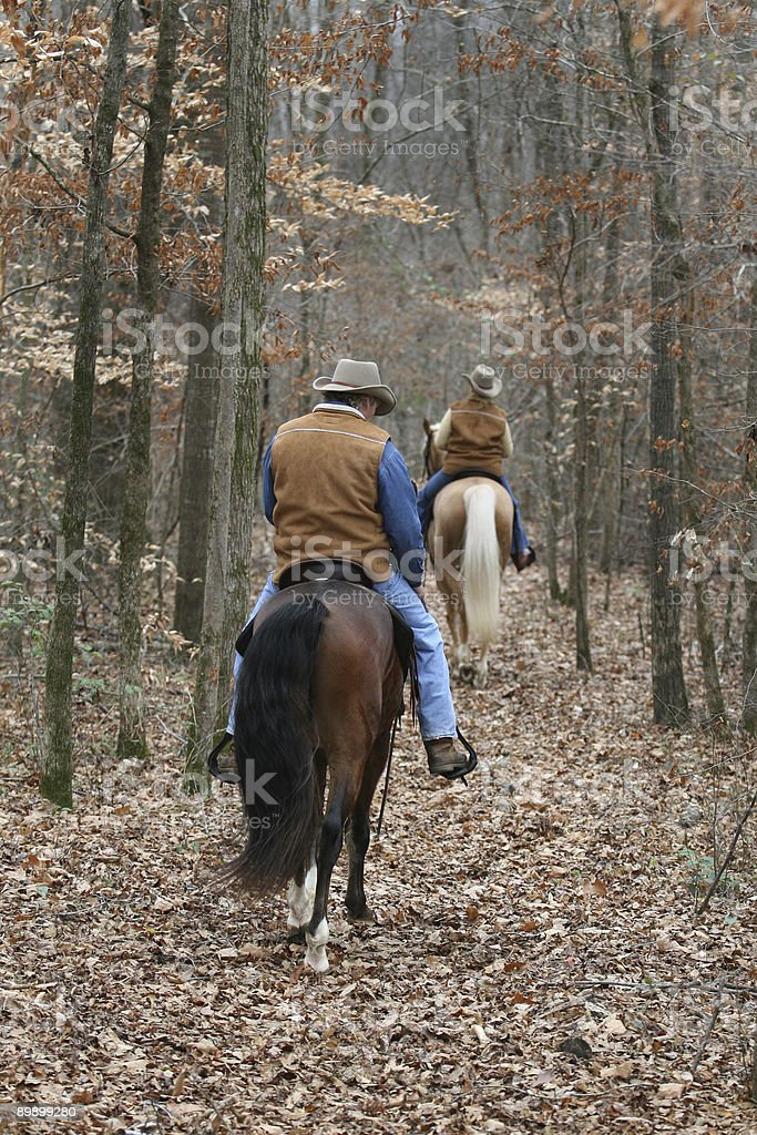 Trail Riding royalty-free stock photo