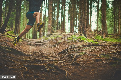 485902386 istock photo Trail running in the forest: jumping roots 503514238
