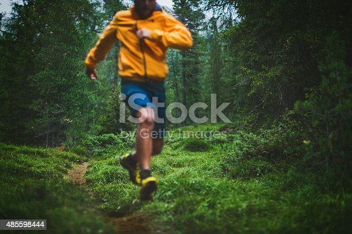 485902386 istock photo Trail running in the forest 485598444