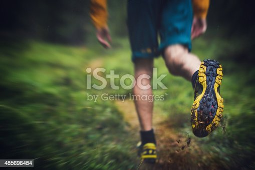 485902386 istock photo Trail running in the forest 485696484