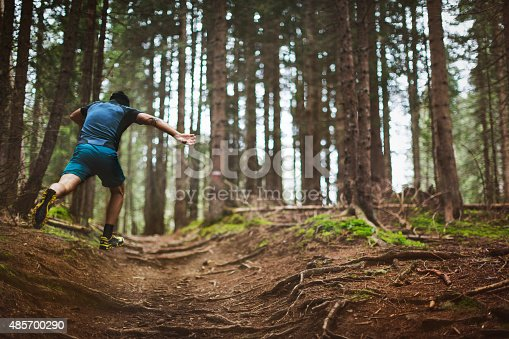485902386 istock photo Trail running in the forest 485700290