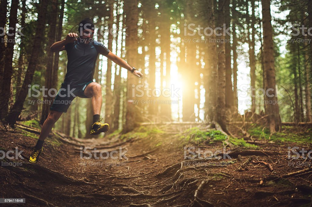 Trail running in the forest stock photo