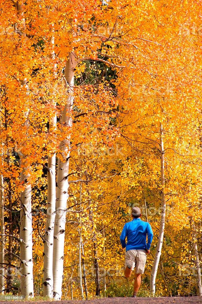 trail running royalty-free stock photo