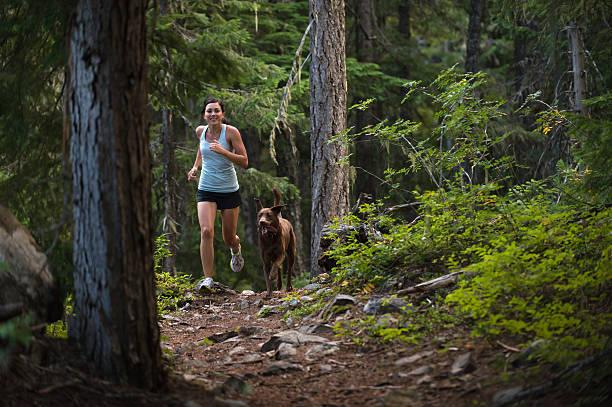 trail running - hund skog bildbanksfoton och bilder