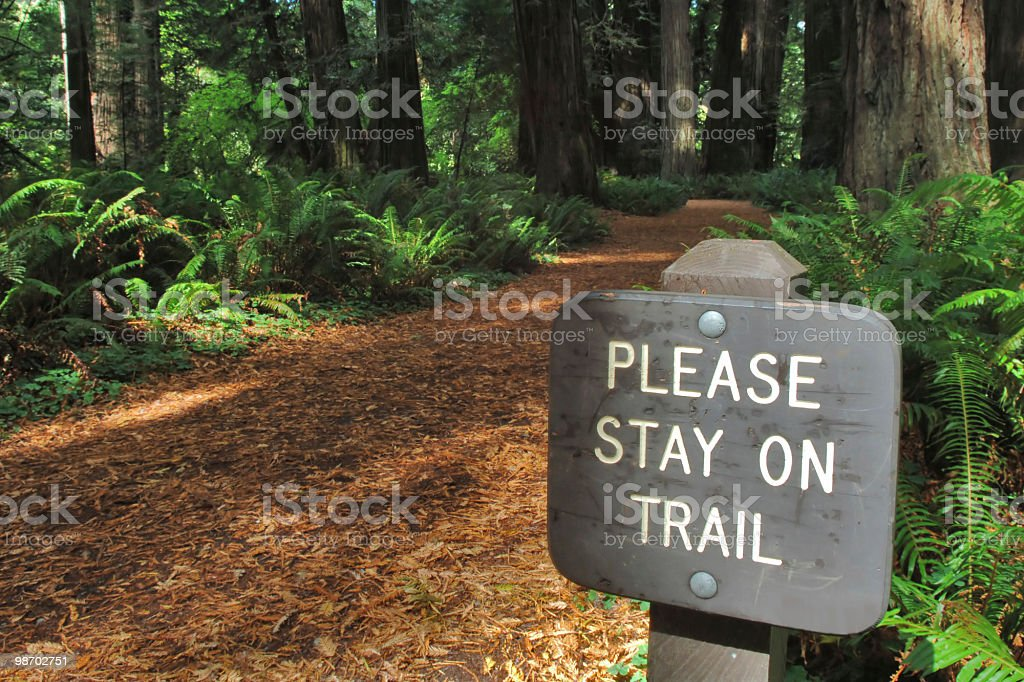 trail sign in giant redwood forest royalty-free stock photo