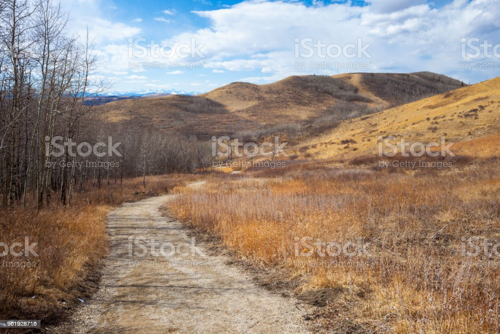 Trail though the beautiful Glenbow Ranch Provincial Park in Alberta stock photo