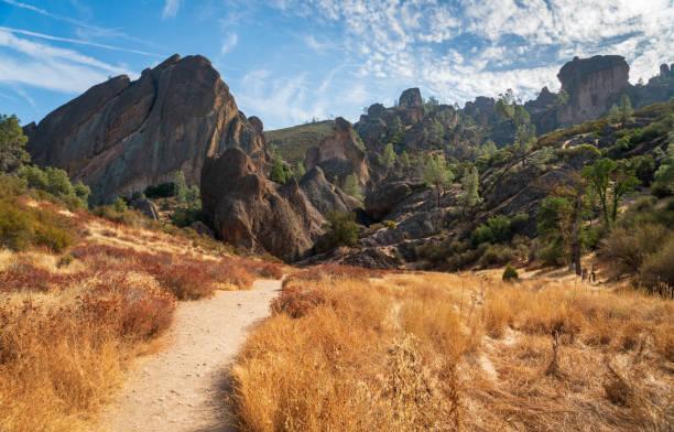 Trail Through Pinnacles National Park stock photo
