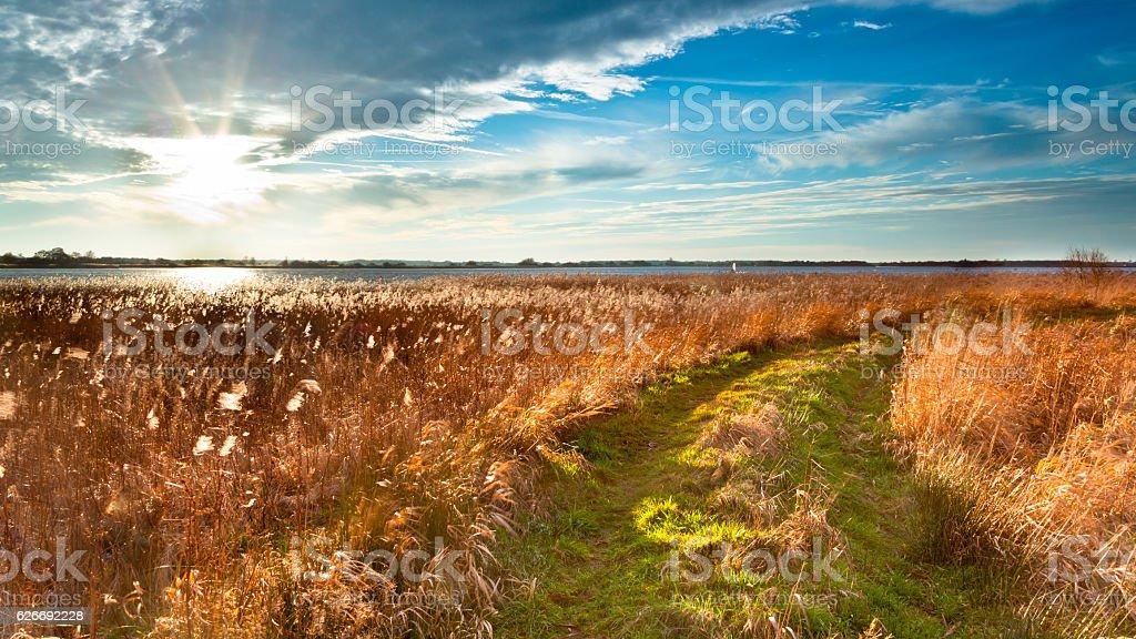Trail through Wild Countryside stock photo