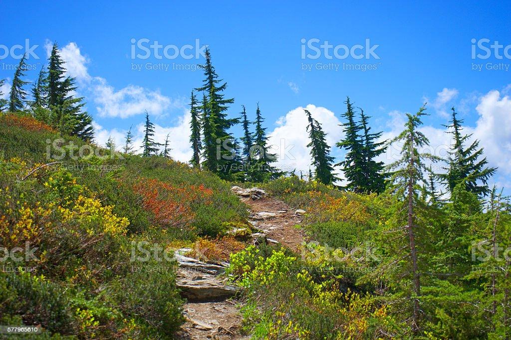 Trail to Hidden Lake stock photo
