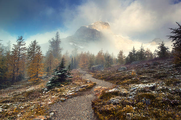 Trail with Mountain in the Mist Autumn overtakes the mountains in this misty mountain scene.  Banff National Park, Canada. valley of the ten peaks stock pictures, royalty-free photos & images