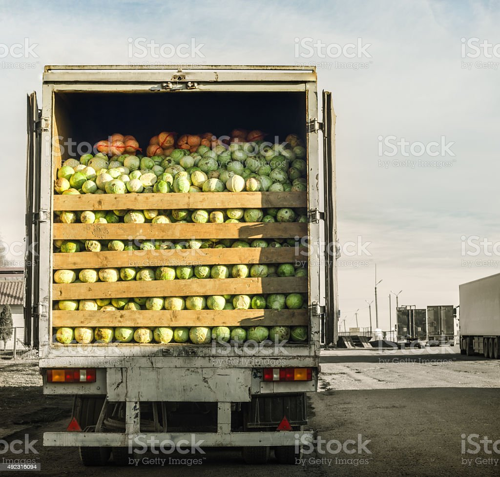 trailer laden with cabbage stock photo