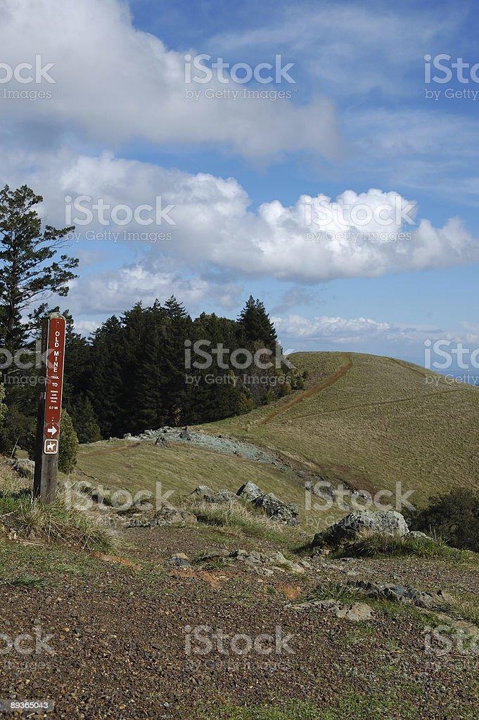 Trails on Mt. Tamalpais royaltyfri bildbanksbilder