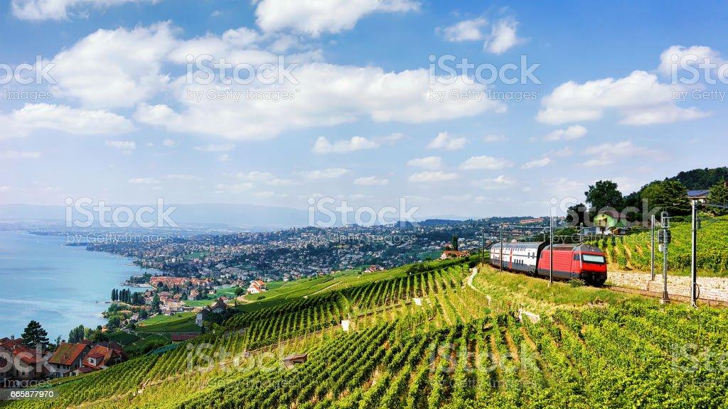 Trainieren Sie im Lavaux Weinbergterrassen am Genfersee-Alpen Lizenzfreies stock-foto