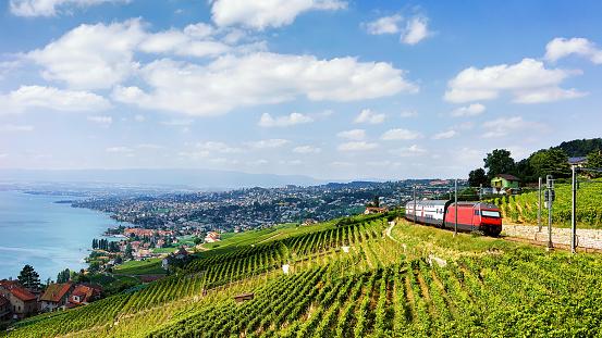 Train at Lavaux Vineyard Terraces at Lake Geneva Alps