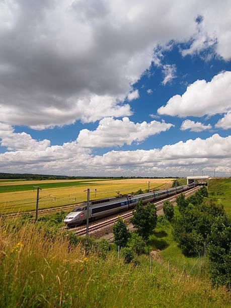 TGV train between the field stock photo