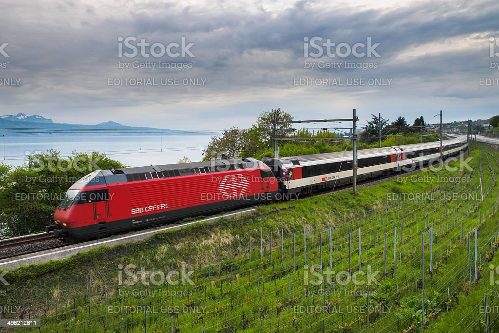 Train between vineyard and lake stock photo