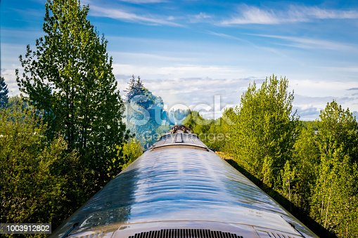 POV from the window of a train in motion through the Chugach National Forest, Alaska