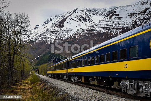 Train in motion through the Chugach National Forest near Portage, Alaska