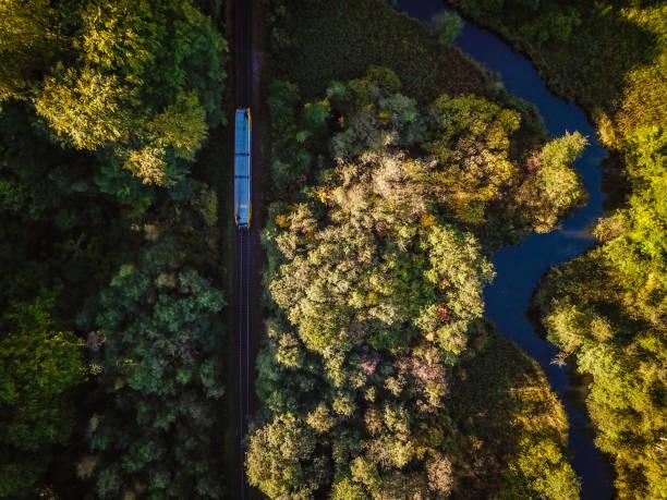 Zug in der Natur – Foto