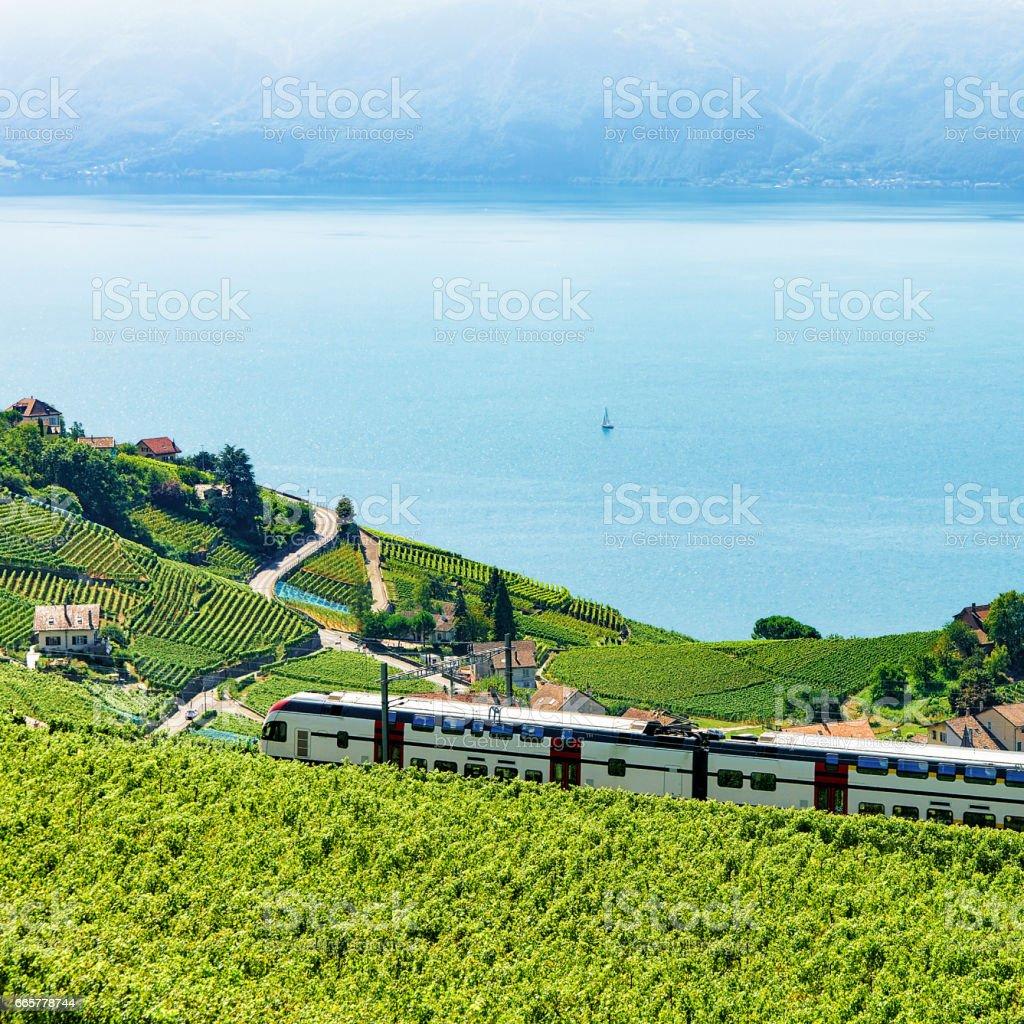 Train in Vineyard Terraces in Lavaux near Lake Geneva Alps stock photo