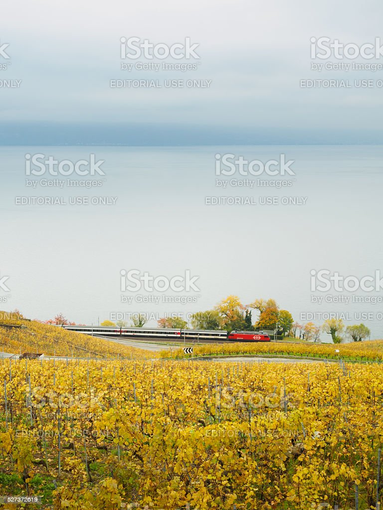Train of Switzerland stock photo
