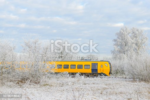 Train of the Dutch Railways driving through a frozen winter landscape during a beautiful winter day.