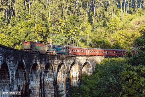 Diesel train passing the nine arch bridge in the jungle of sri lanka
