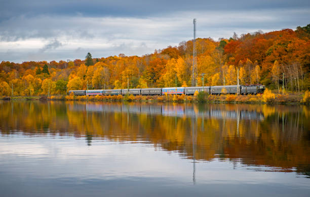Train on the railroad by the lake wrapped in autumn colors