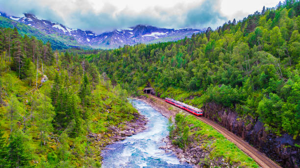 Train Oslo - Bergen in mountains. Norway. Train Oslo - Bergen in mountains. Norway. oslo stock pictures, royalty-free photos & images