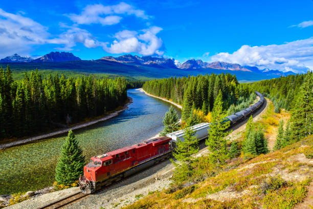 Train passing famous Morant's curve,Canadian Rockies,Canada. stock photo