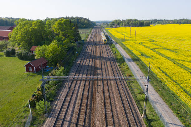 Train passing, fields, drone view - foto stock