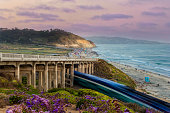 Torrey Pines state beach with the coaster passing by under the bridge in Del Mar, CA, USA