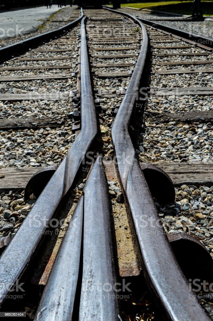 Train Track Crossing royalty-free stock photo