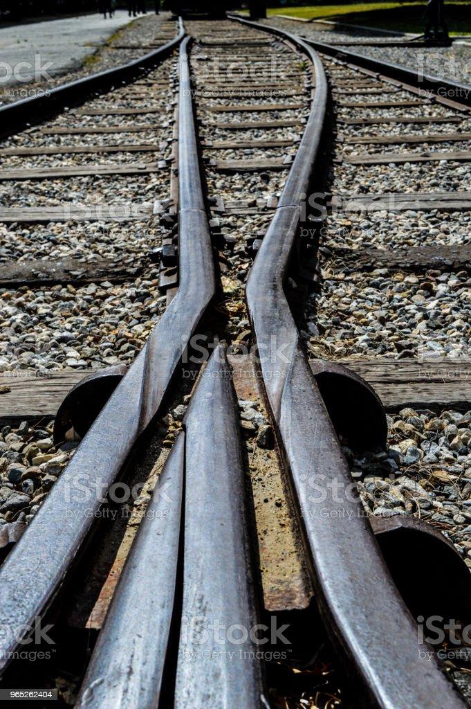 Train Track Crossing - Zbiór zdjęć royalty-free (Bez ludzi)