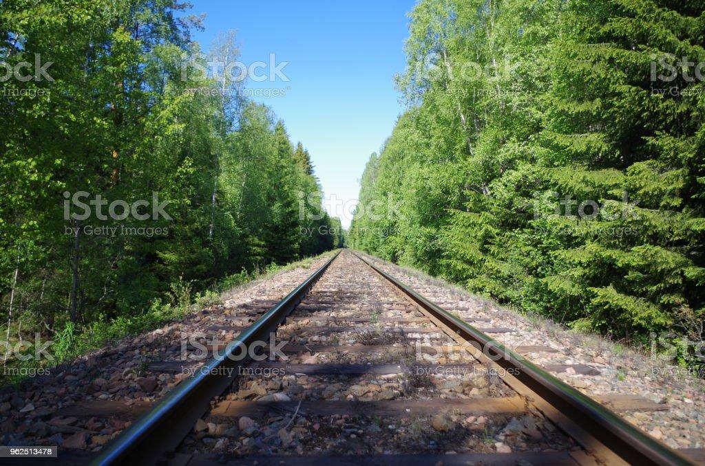 Trilhos de trem em uma floresta - Foto de stock de Dalarna royalty-free