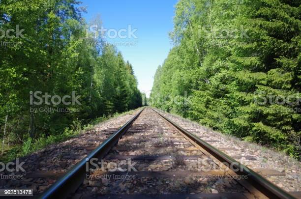 Foto de Trilhos De Trem Em Uma Floresta e mais fotos de stock de Dalarna