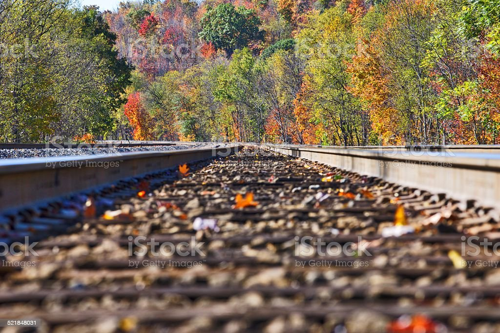 Train Tracks in Fall Colors stock photo
