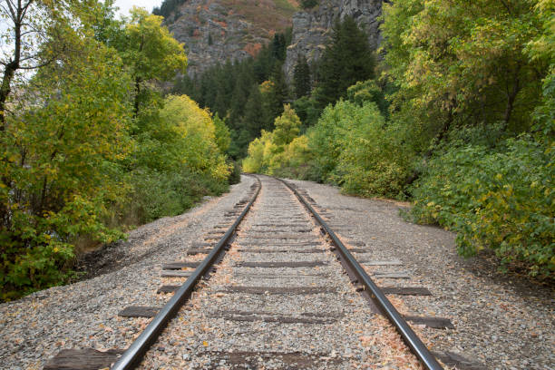 Train Tracks in the Mountains Train tracks in the mountains in the fall jude beck stock pictures, royalty-free photos & images