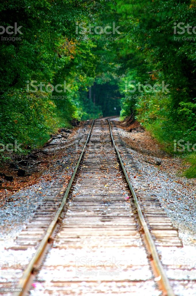 Train Tracks stock photo